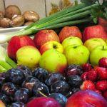 X Konferencja Technologów Przetwórstwa Owoców i Warzyw