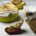 Aflatoksyny<br> w żywności